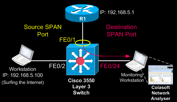 cisco-switches-span-2